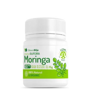 Moringa, zdravo bilje