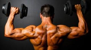 najbolji-trening-za-ramena