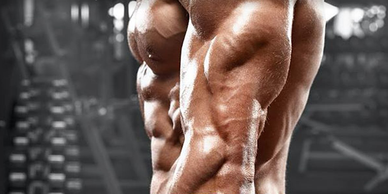 veliki-triceps-velike-ruke